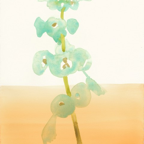 Stacey Vetter - <b>Bells of Ireland with Orange</b>, watercolor on paper, 10 x 8 inches