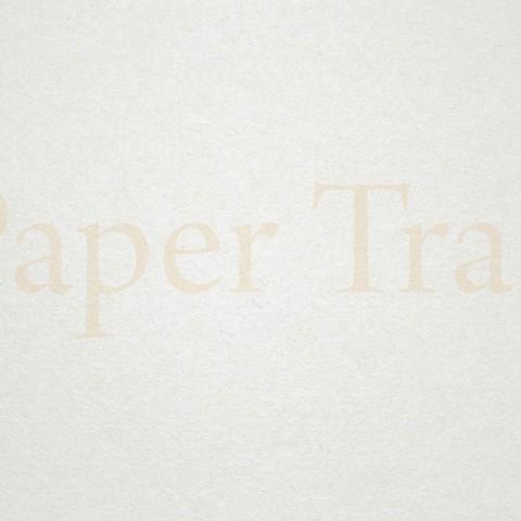 JayJay-Paper