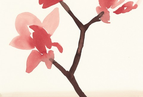 Stacey Vetter - Red Magnolia, watercolor on paper, 10 x 8 inches