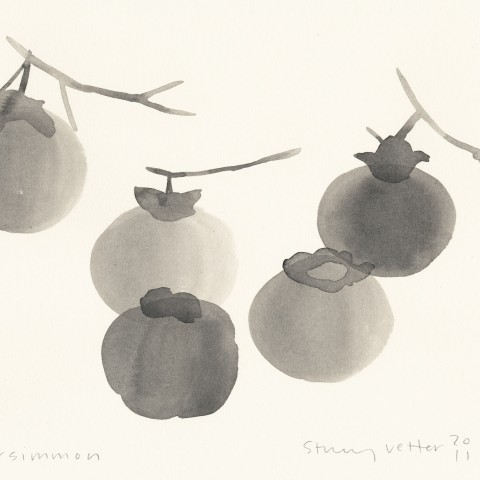 Stacey Vetter - <b>Persimmon</b>, ink on paper, 8 x 10 inches